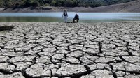 2014 likely to be globe's hottest year, meteorologists say