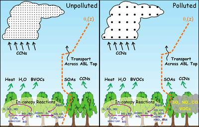 Polluted air path