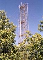 Borden Forest image