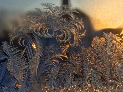 Anthony Preucil 2017 Frost on window after freezing fog